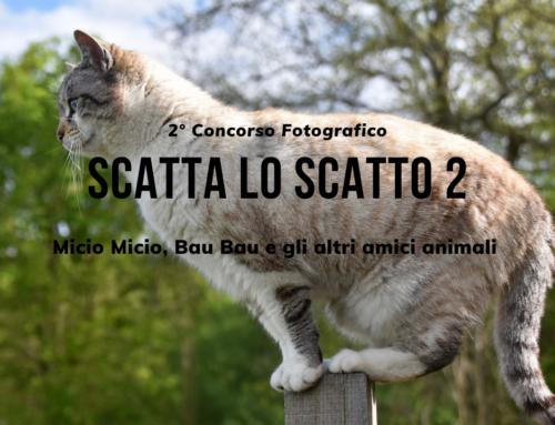 """2° concorso fotografico """"SCATTA LO SCATTO 2"""" – Micio Micio, Bau Bau e gli altri amici animali"""