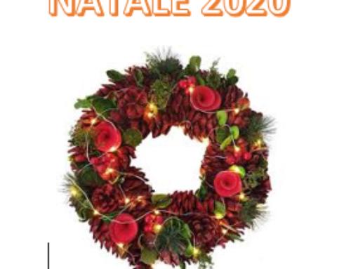 PACCO DI NATALE 2020